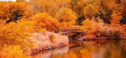 Pejzaż jesiennych pomarańczowych drzew nad jeziorem.
